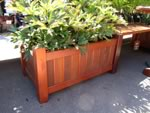 Wide patio planter with plants
